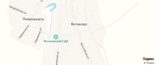 Шоссейная улица на карте деревни Янтиково с номерами домов