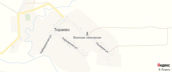 Полевая улица на карте деревни Тораево с номерами домов