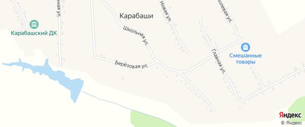 Березовая улица на карте деревни Карабаши с номерами домов