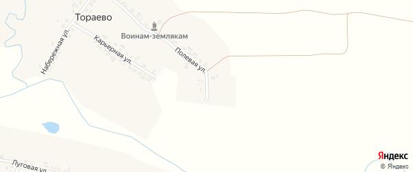 Молодежная улица на карте деревни Тораево с номерами домов