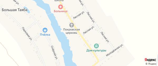 Центральная улица на карте села Большей Таяба с номерами домов