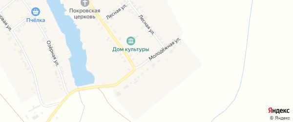 Молодежная улица на карте села Большей Таяба с номерами домов