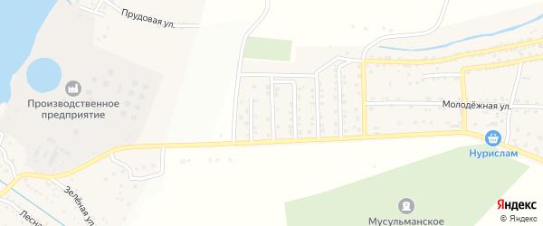 Ассадулаевская улица на карте села Татарской Башмаковки с номерами домов