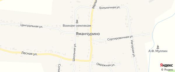 Мельничная улица на карте деревни Яманчурино с номерами домов