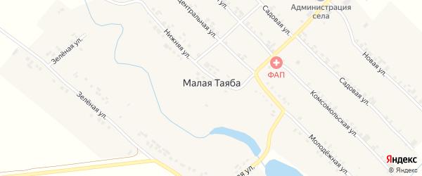 Центральная улица на карте деревни Малой Таяба с номерами домов