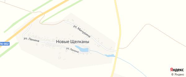 Улица Мичурина на карте деревни Новые Щелканы с номерами домов