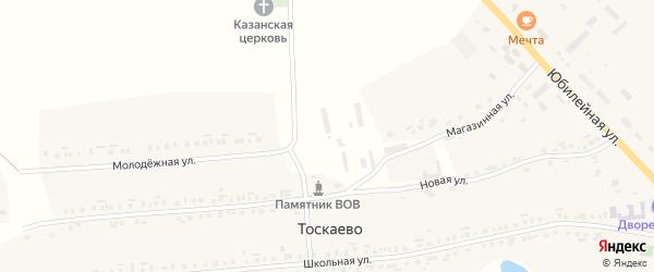 Магазинная улица на карте деревни Тоскаево с номерами домов
