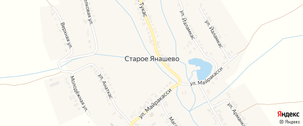 Улица Малтикас на карте деревни Старое Янашево с номерами домов