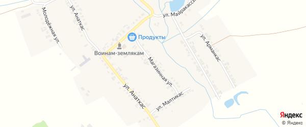 Магазинная улица на карте деревни Старое Янашево с номерами домов