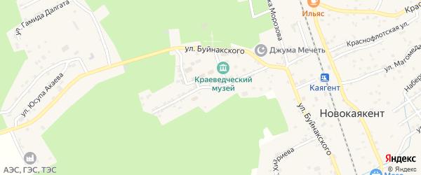Новая улица на карте села Новокаякента с номерами домов