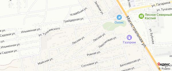 Лесная улица на карте села Солянки с номерами домов