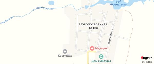 Садовая улица на карте деревни Новопоселенной Таяба с номерами домов