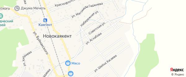 Улица Асхабова на карте села Новокаякента с номерами домов