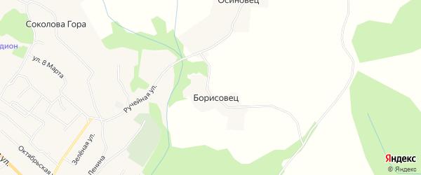 Карта деревни Борисовца в Архангельской области с улицами и номерами домов