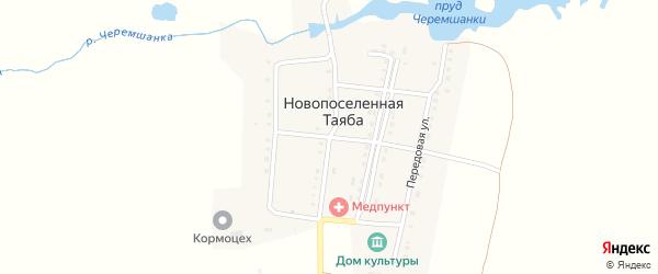 Пионерская улица на карте деревни Новопоселенной Таяба с номерами домов