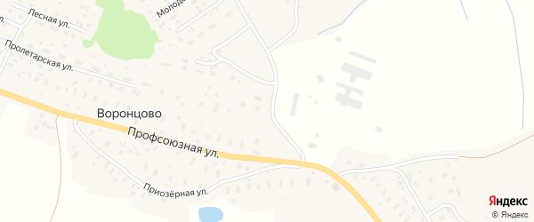 Лесная улица на карте деревни Воронцово с номерами домов