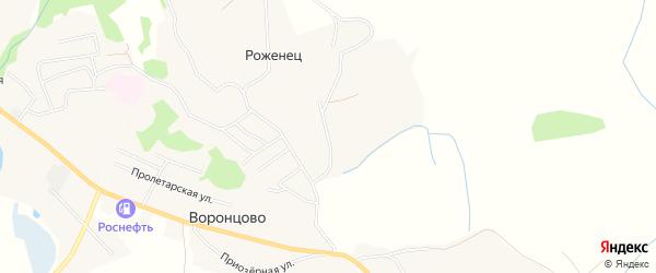 Карта деревни Роженца в Архангельской области с улицами и номерами домов