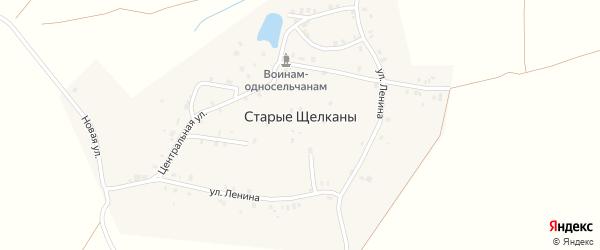 Улица Мичурина на карте деревни Старые Щелканы с номерами домов