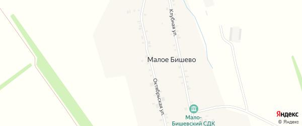 Октябрьская улица на карте деревни Малое Бишево с номерами домов
