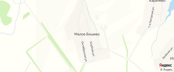 Карта деревни Малое Бишево в Чувашии с улицами и номерами домов