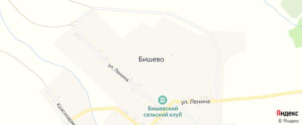Механизаторская улица на карте деревни Бишево с номерами домов