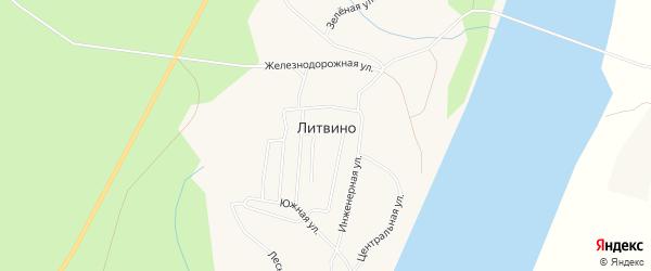 Карта деревни Литвино в Архангельской области с улицами и номерами домов