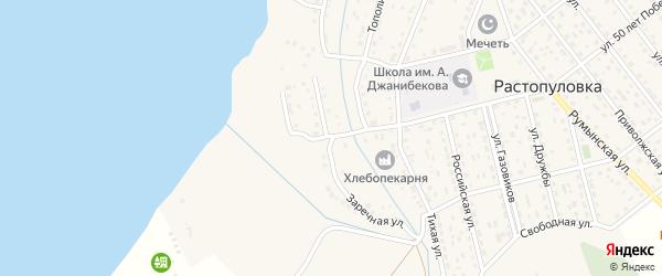 Заречная улица на карте села Растопуловки с номерами домов