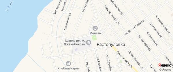 Школьный переулок на карте села Растопуловки с номерами домов