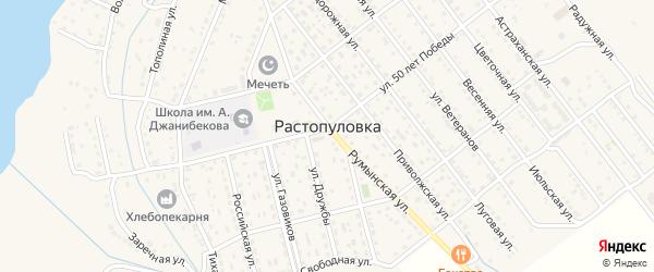 Народная улица на карте села Растопуловки с номерами домов