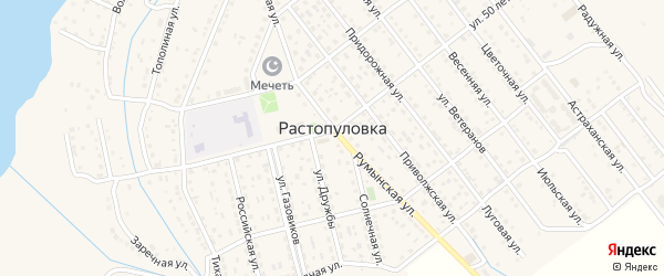 Территория сдт Полиграфист на карте села Растопуловки с номерами домов