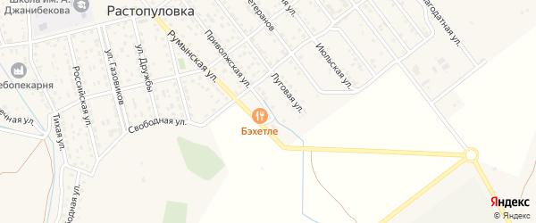 Улица Новоселов на карте села Растопуловки с номерами домов