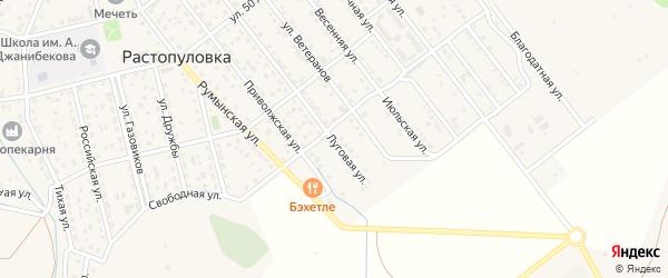 Луговая улица на карте села Растопуловки с номерами домов