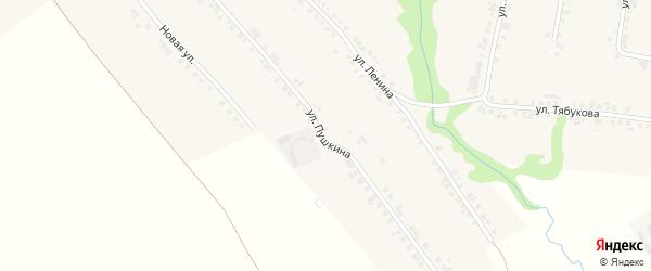 Улица Пушкина на карте села Яльчиков с номерами домов