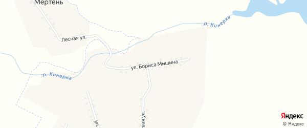 Улица Бориса Мишина на карте деревни Кинеры с номерами домов