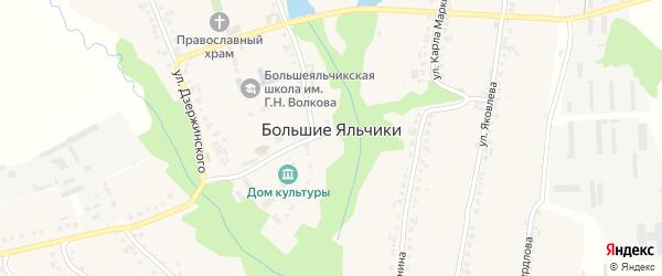 Молодежная улица на карте села Большие Яльчики с номерами домов