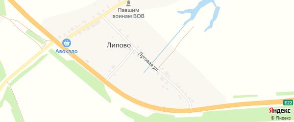 Луговая улица на карте деревни Липово с номерами домов