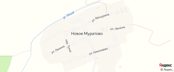 Улица Мичурина на карте деревни Новое Муратово с номерами домов
