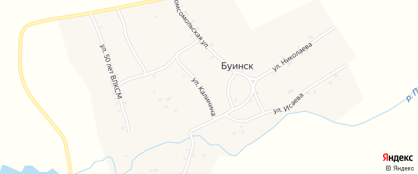 Улица Николаева на карте деревни Буинска с номерами домов