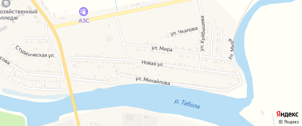 Животноводческая точка Новая Ферма на карте Камызяка с номерами домов