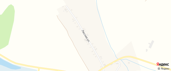 Лесная улица на карте деревни Картлуево с номерами домов