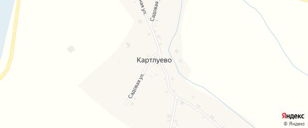 Зеленая улица на карте деревни Картлуево с номерами домов