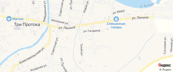 Южная улица на карте села Три Протоки с номерами домов