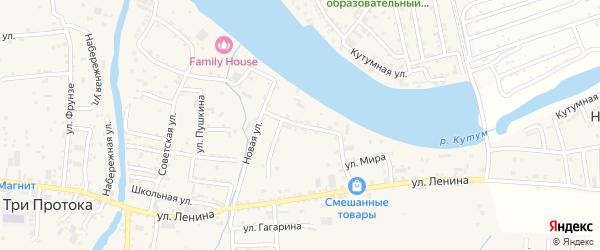Прикутумная улица на карте села Три Протоки с номерами домов