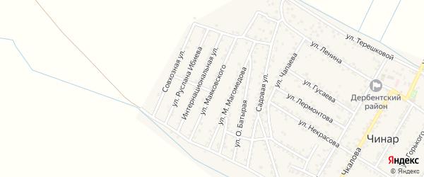Улица Маяковского на карте села Чинара с номерами домов