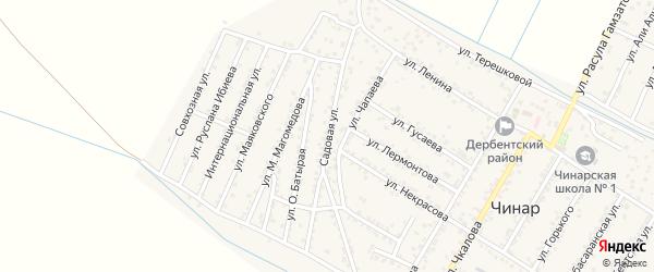 Садовая улица на карте села Чинара с номерами домов