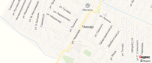 Улица Некрасова на карте села Чинара с номерами домов