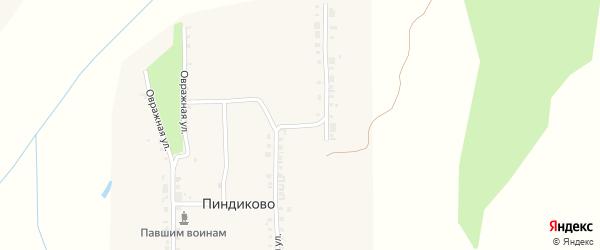 Полевая улица на карте деревни Пиндиково с номерами домов