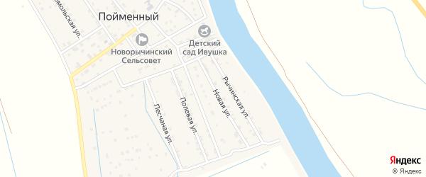 Новая улица на карте Пойменного поселка с номерами домов