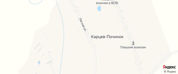 Лесная улица на карте деревни Карцева Починка с номерами домов