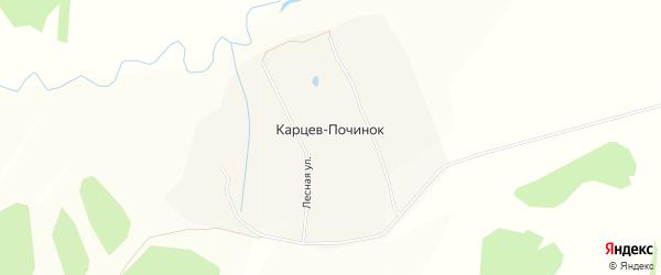 Карта деревни Карцева Починка в Чувашии с улицами и номерами домов